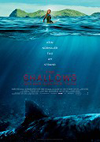 shallows_cover